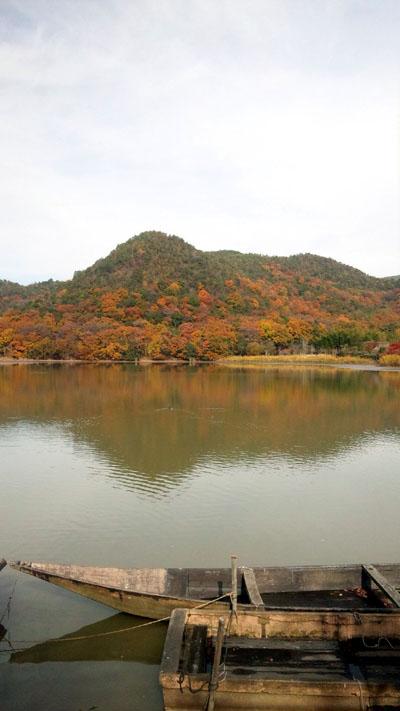 京都広沢の池